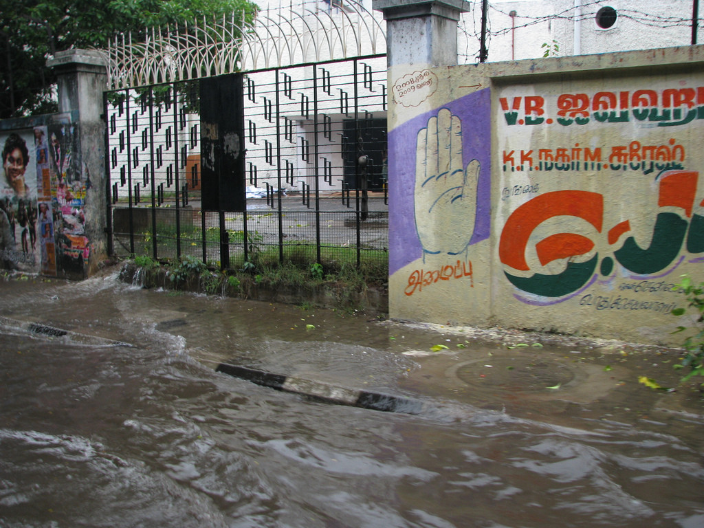 Drainage channels are blocked. Photo by McKay Savage