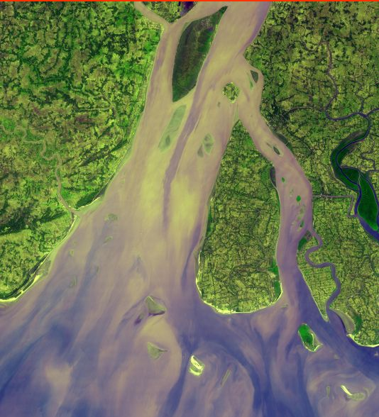 Hooghly River Delta. Photo Credit: Asterweb